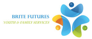 brite-futures-logo-the-village-network